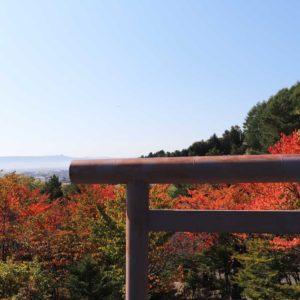 nakafurano/shrine/autumn