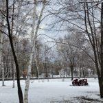 furano/snow-scene