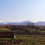 hinode-park/late-autumn