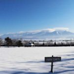 farm-tomita-winter