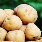 furano/potatoes