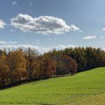 furano/late-autumn