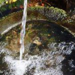 furano/spring-water